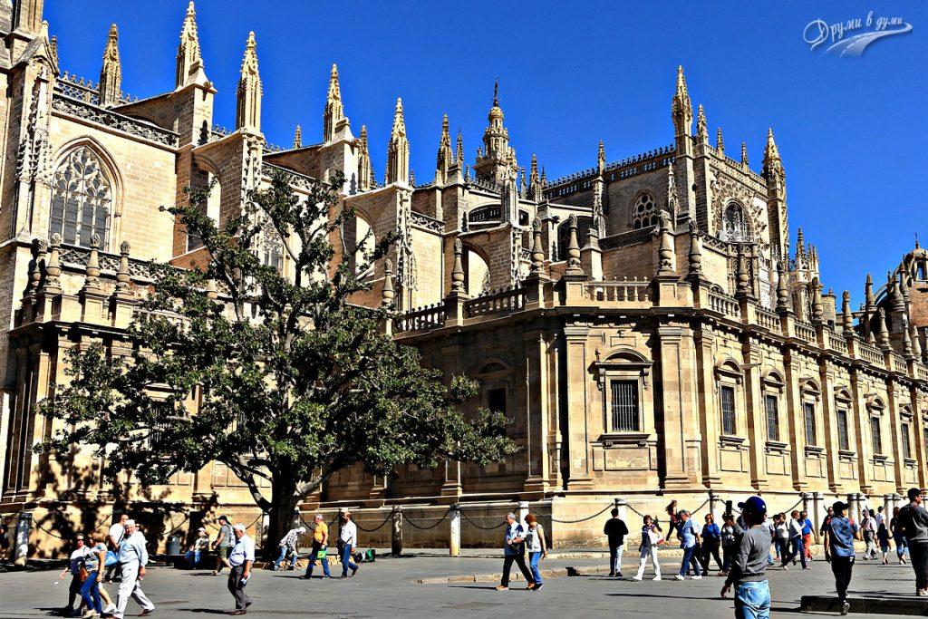 Катедралата на Севиля Санта Мария де ла Седе